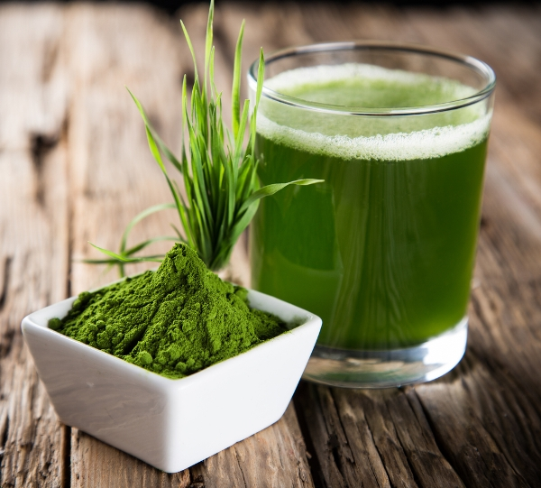 5 Reasons Why You Should Start Drinking Wheatgrass Juice